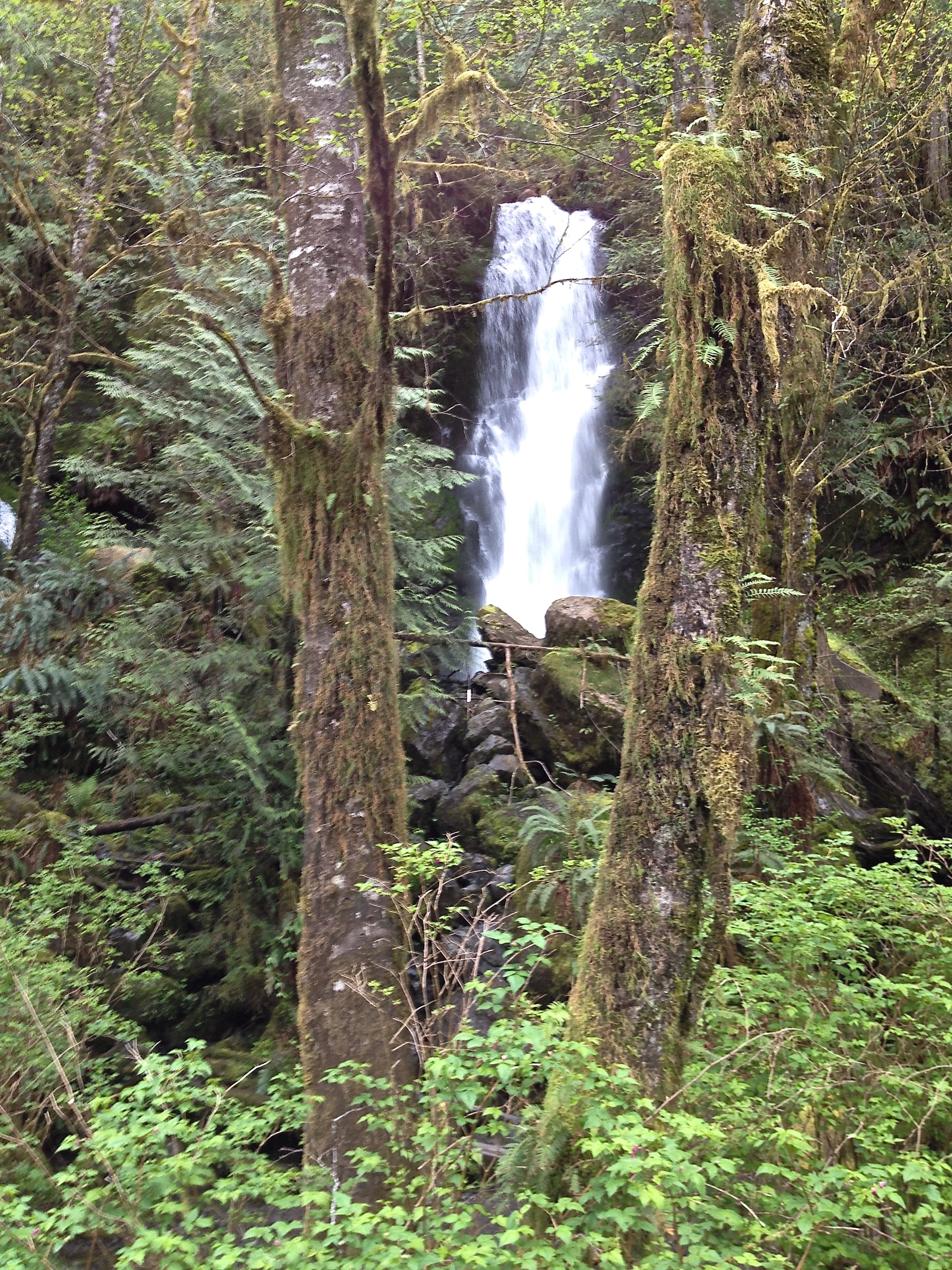 Waterfall in Columbia Gorge