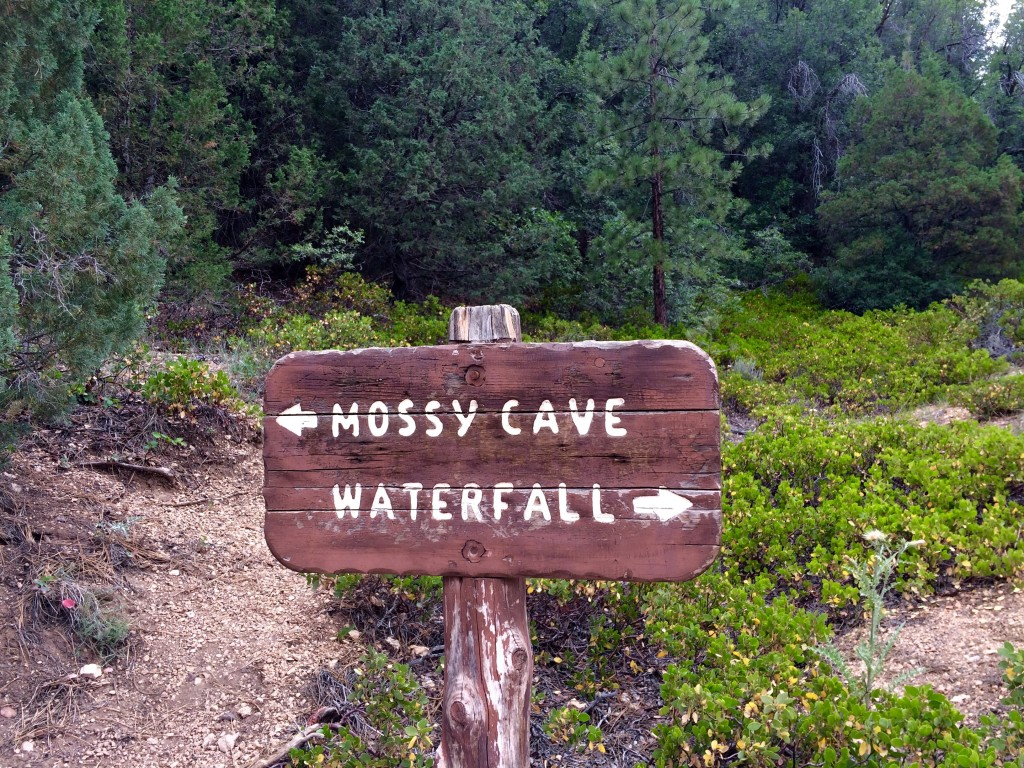 Mossy Cave Trail