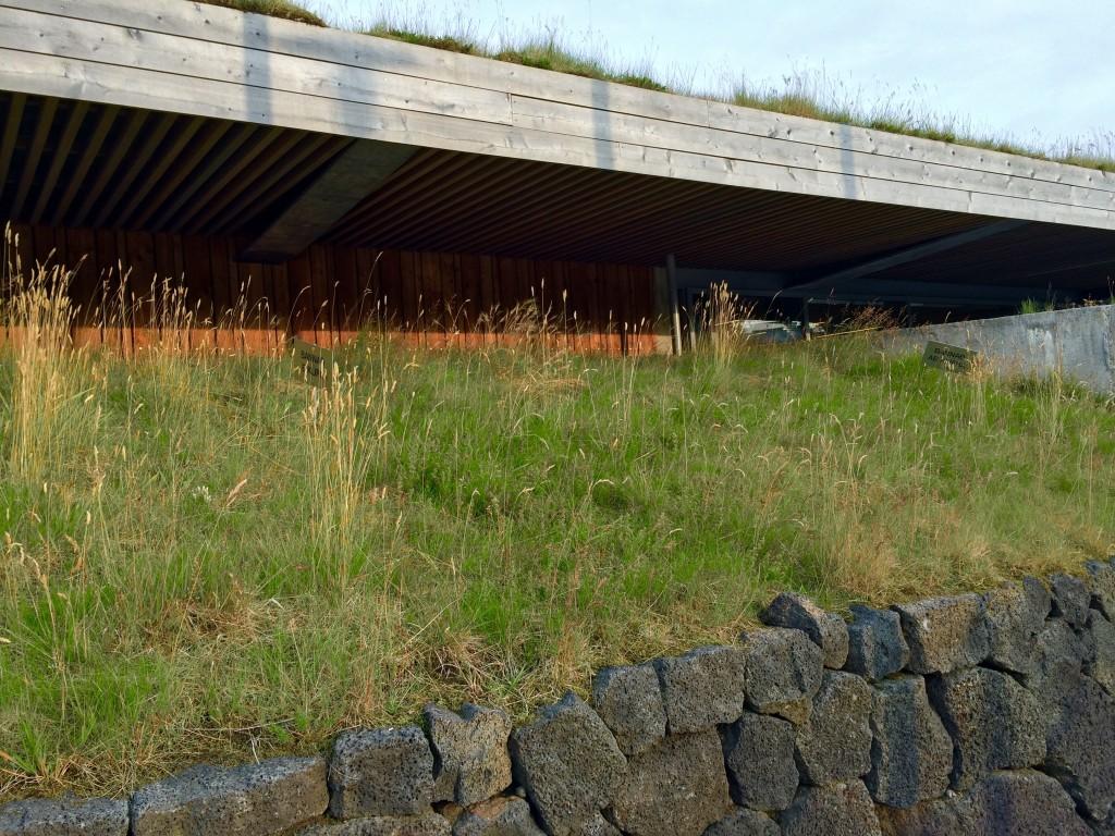 Volcanic rock wall & turf roof