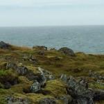Anarstappi to Hellnar hike