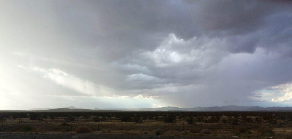 Rain in the Mojave Desert