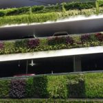 Ornamental grasses enhance parking structure