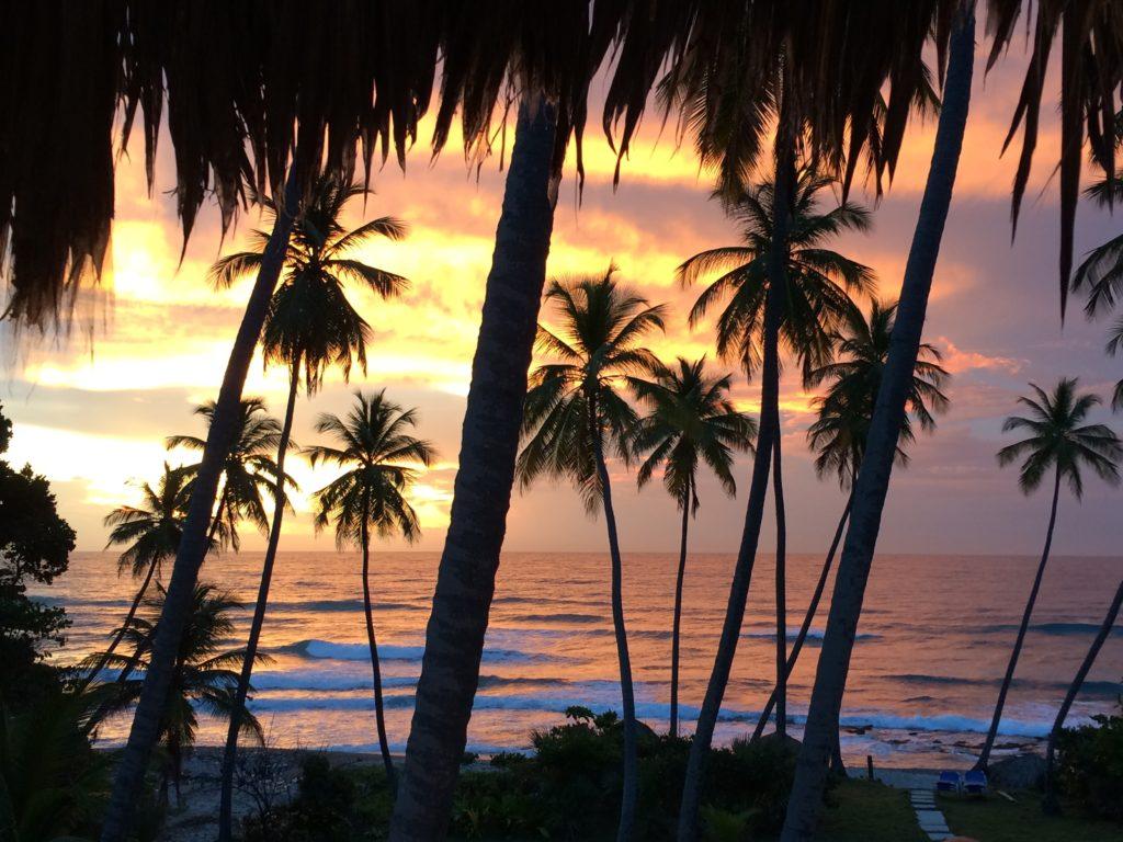 Caribbean sunrise 2
