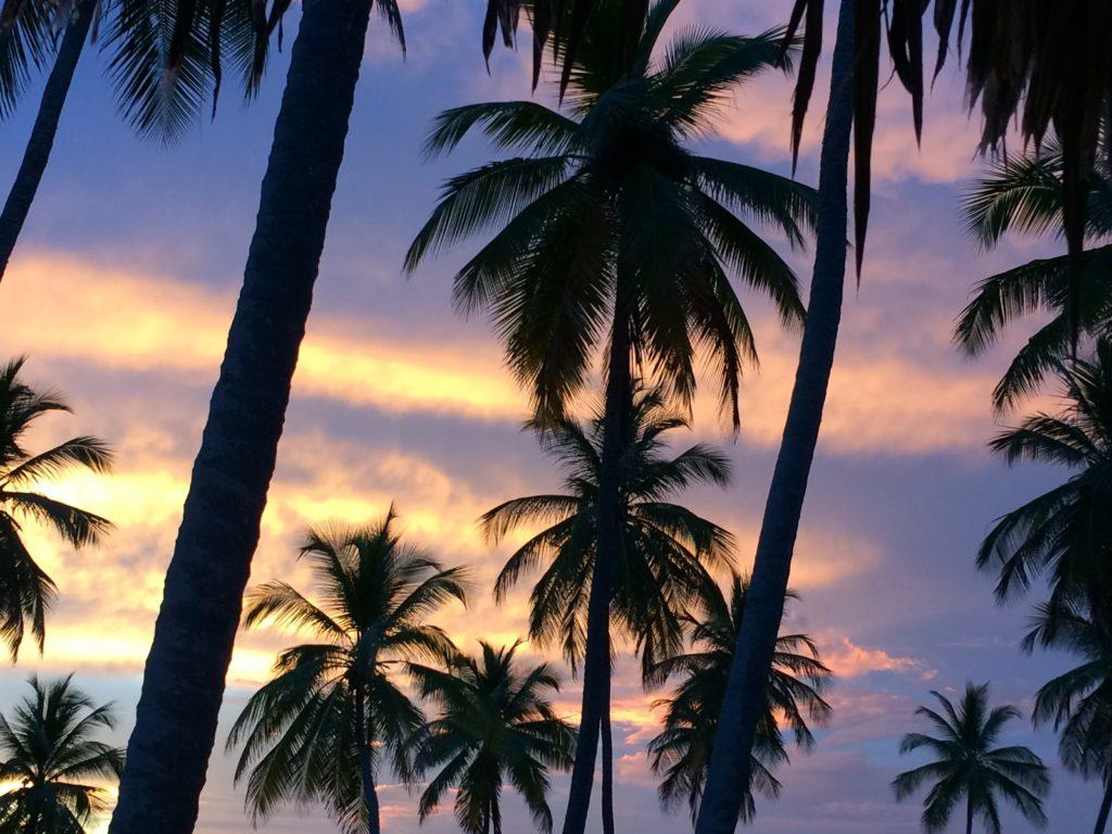 Caribbean sunrise 4