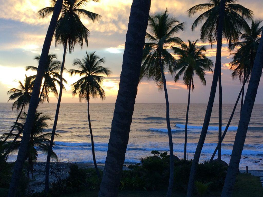 Caribbean sunrise 8