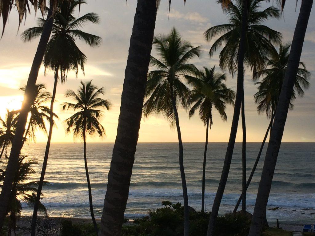 Caribbean sunrise 9