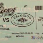 Tigres vs Liones ticket