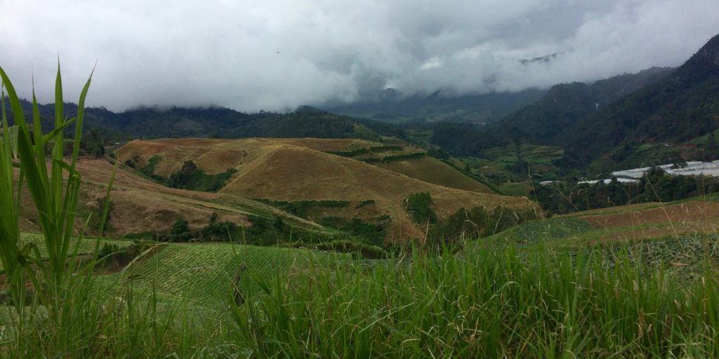 Farms of La Constanza