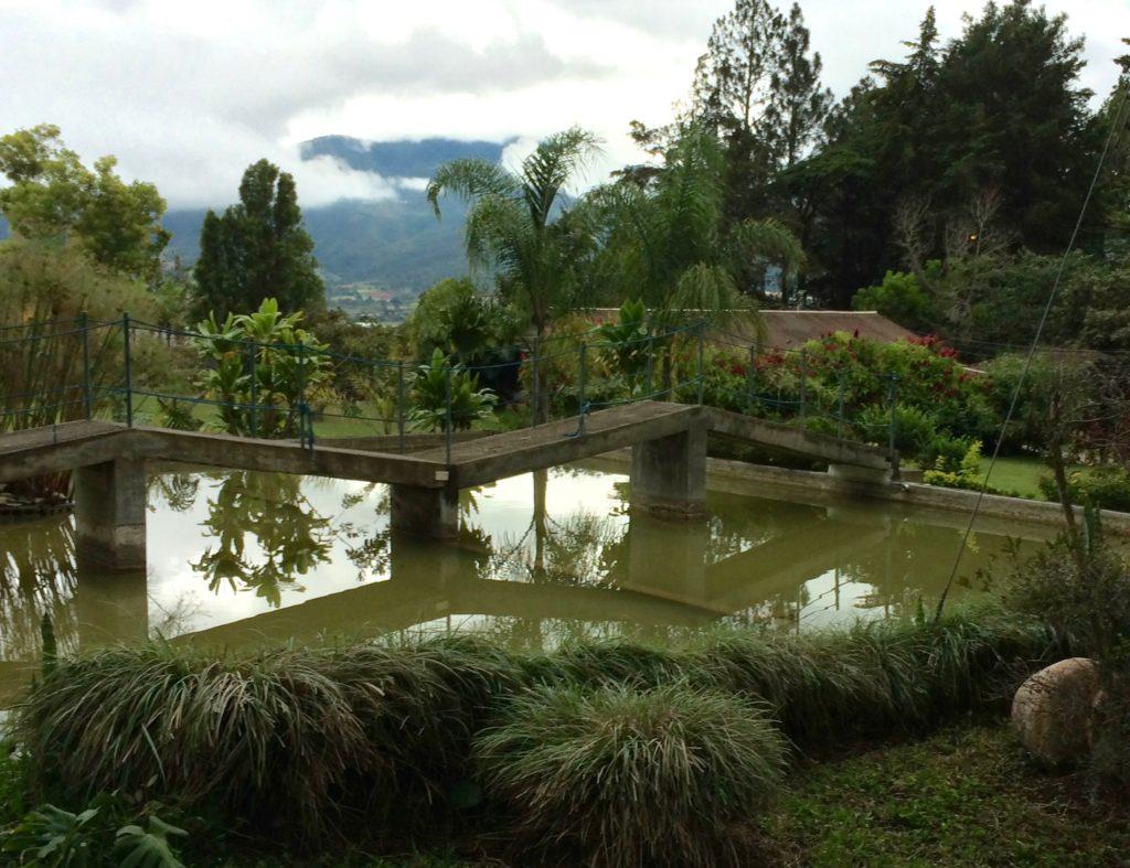 Pond at Altocerras Villas