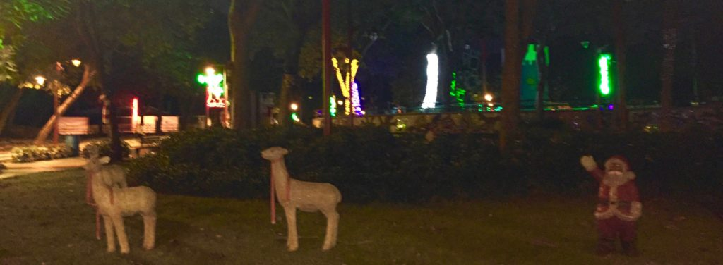 The shepherds came with alpacas, didn't you know?