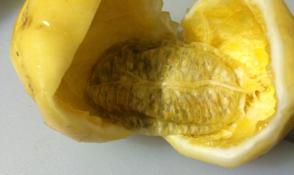 Seeds and pulp in a sack