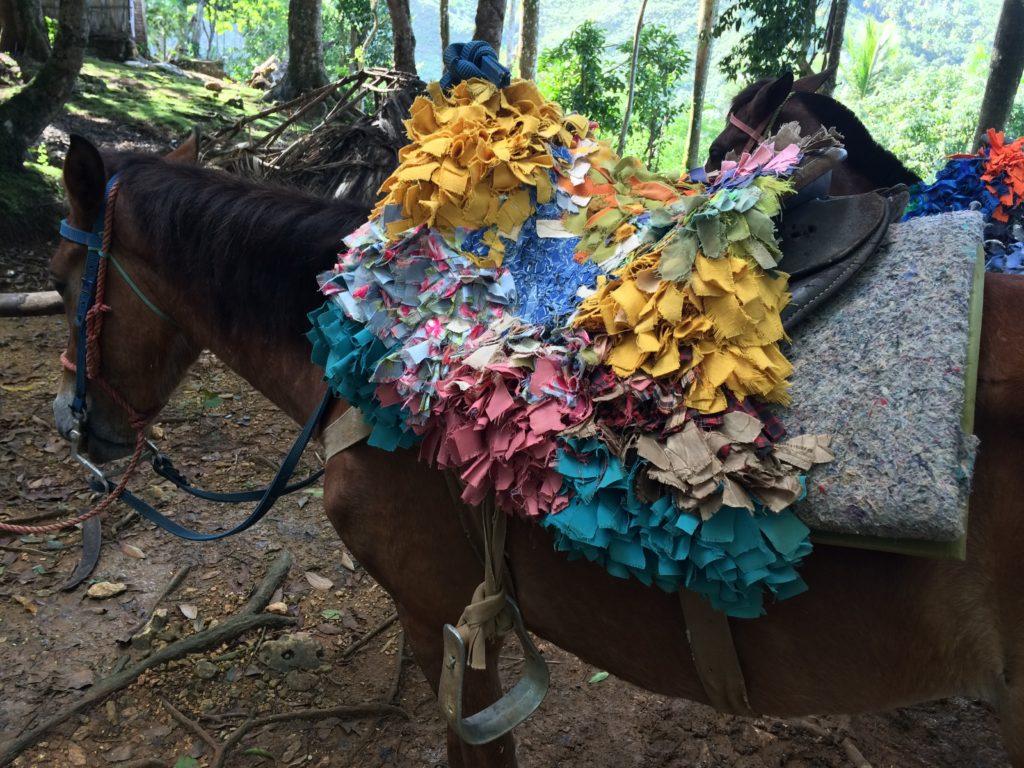 Soft-sitting saddle