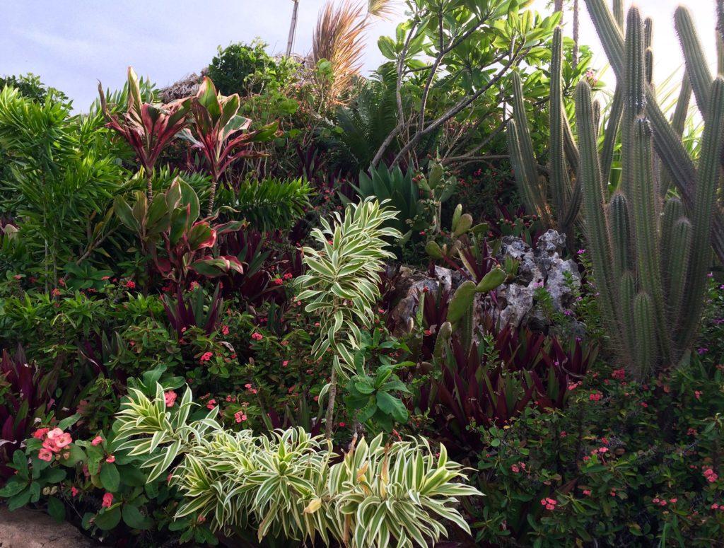 El Monte Azul gardens