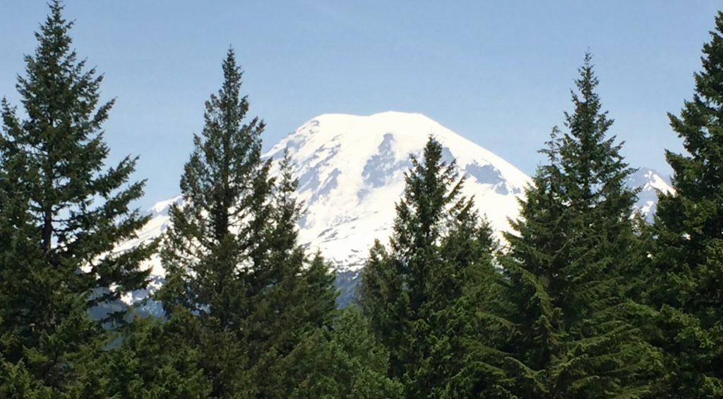 Mount Rainier June 6th