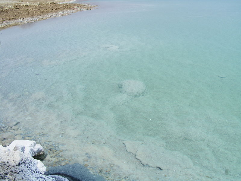 The Living Dead Sea - Good For Your Skin