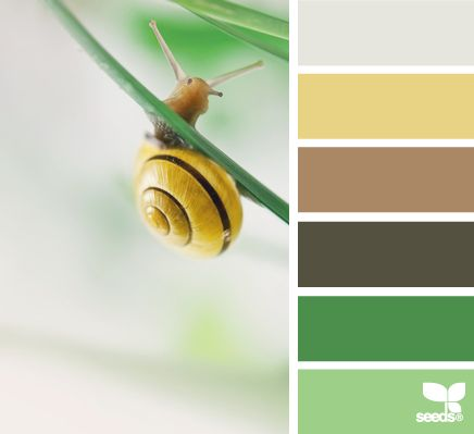 Sunday Spotlight - Ispiration for CPSC Color Crawl