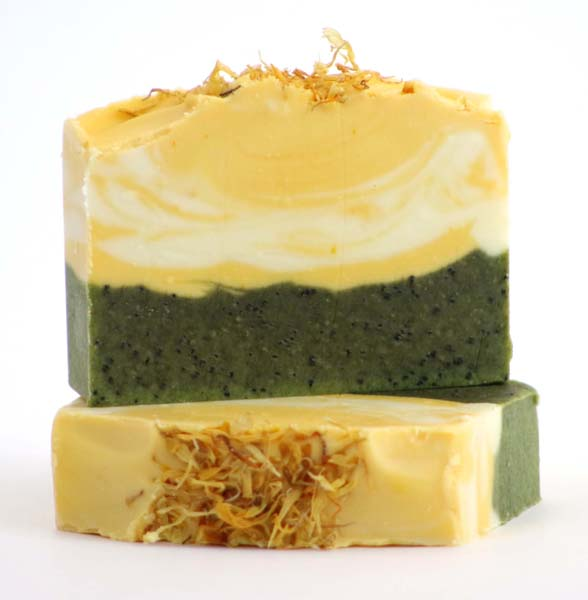 Make Soap Or Recipe From Book or Kit Your Own