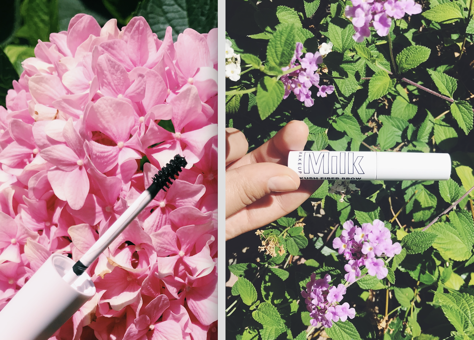 3 Brow Gels You Need to Try…Like Now