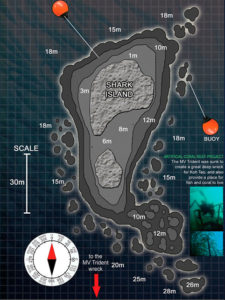 nurkowanie_koh_tao_shark_island