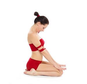 502px-Simhasana_Yoga-Asana_Nina-Mel