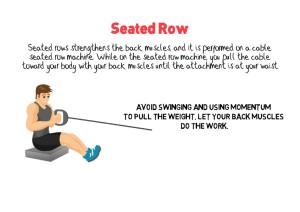 Seated Row