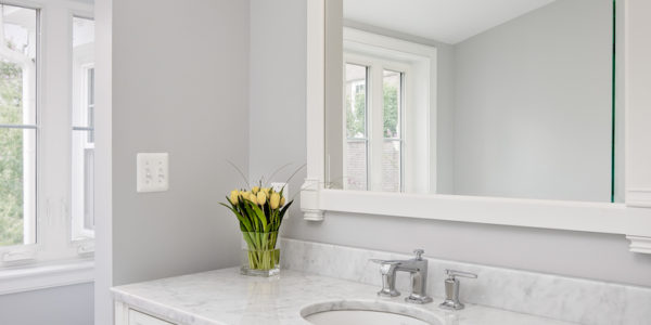 Woodley Park Washington DC Master Bathroom Remodel