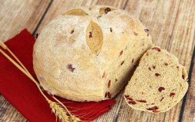 great-harvest-bread-cary