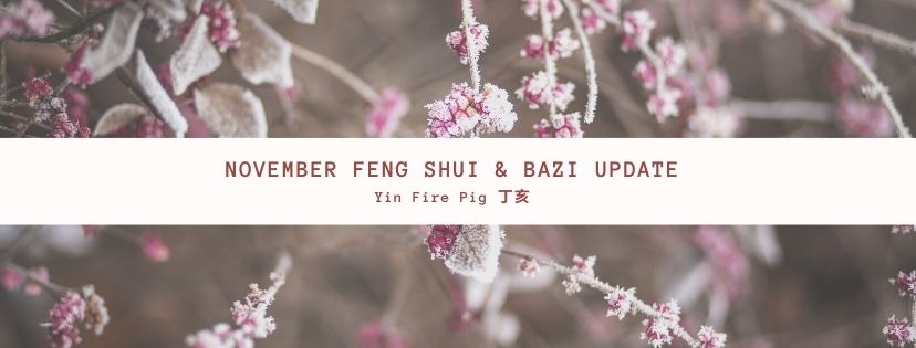 November 2020 Yin Fire Pig Feng Shui & BaZi Update