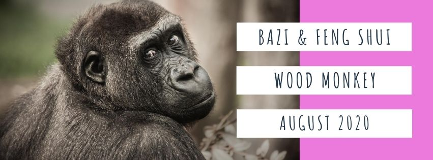 August 2020 Yang Wood Monkey Feng Shui & BaZi Update