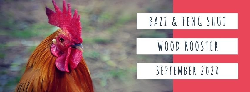 September 2020 Yin Wood Rooster Feng Shui & BaZi Update