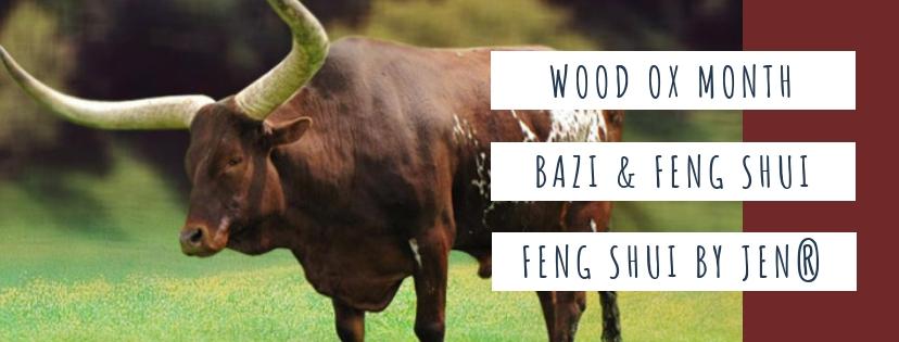 January 2019 Yin Wood Ox: Feng Shui & BaZi Update