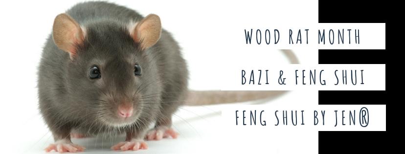 December 2018 Yang Wood Rat: Feng Shui & BaZi Update