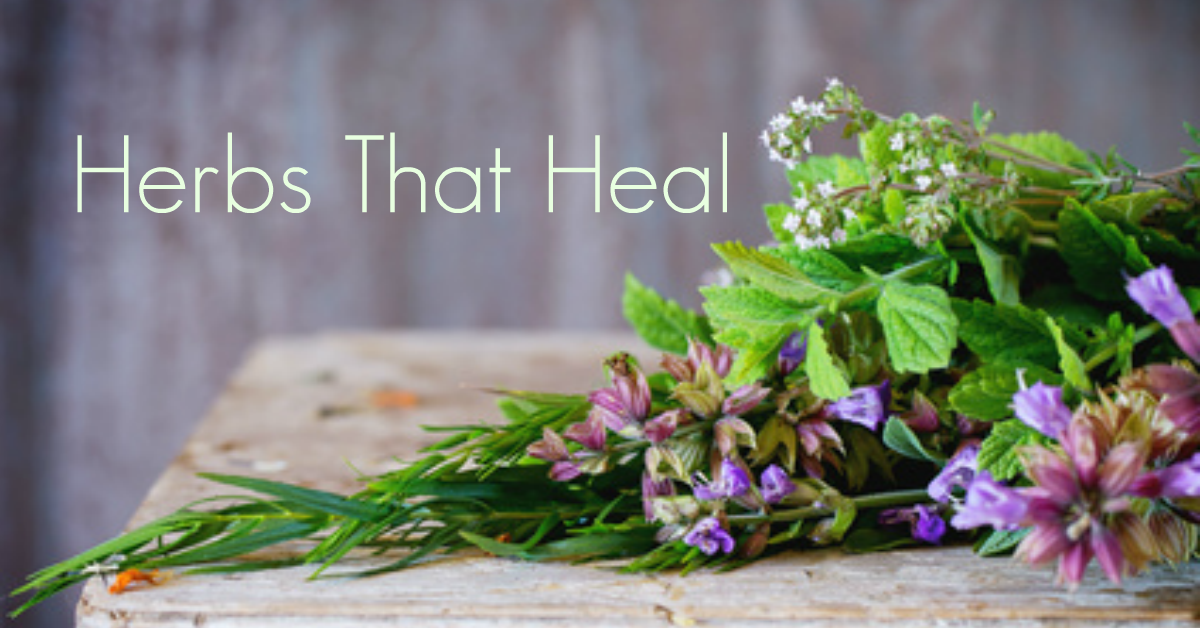 5 Ways Herbs Can Heal Your Body
