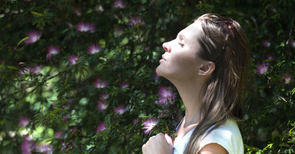 beginner's meditation practice