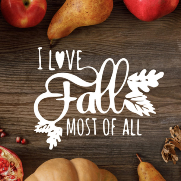 Eat With The Seasons – Foods For Fall