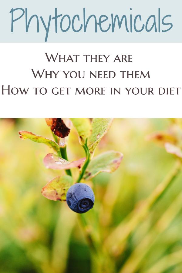 Phtochemicals and their benefits (phytonutrients/carotenoids. ellagic acid. resveratrol. flavonoids. phytoestrogens. glucosinolates/ nutrients in fruit/ nutrients in vegetables/ benefits of plants/ benefits of vegetarian diet/ benefits of vegan diet/ superfoods)