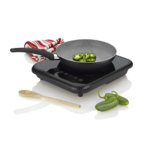 Fagor 2X Induction Cooktop