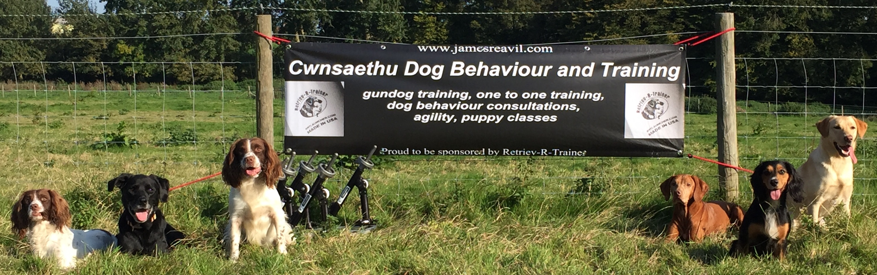 Cwnsaethu Dog Behaviour and Training banner