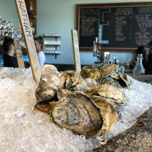 Where to eat in Portland Maine Eventide Oyster Co Oysters