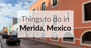 Things To Do in Merida Mexico The Roving Fox