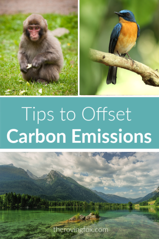 Carbon Offsets for Flights. How to offset carbon emissions