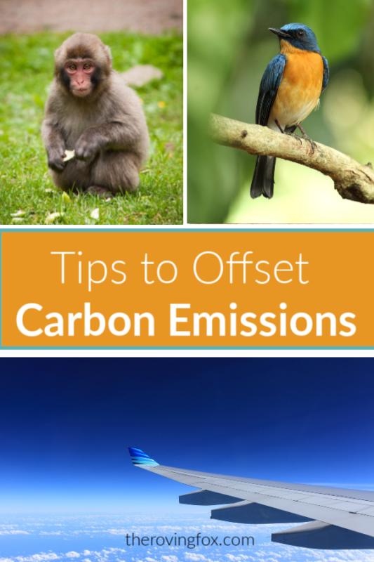 Carbon Offsets for Flights. Tips to offset carbon emissions