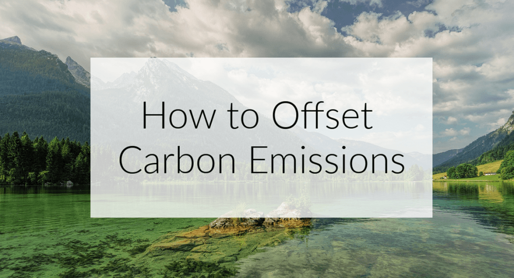 Carbon Offsets for Flights: A Sustainable Travel Must?