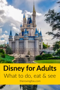 Disney for adults Pinterest image