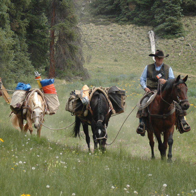 Horse team hauling gear to the site