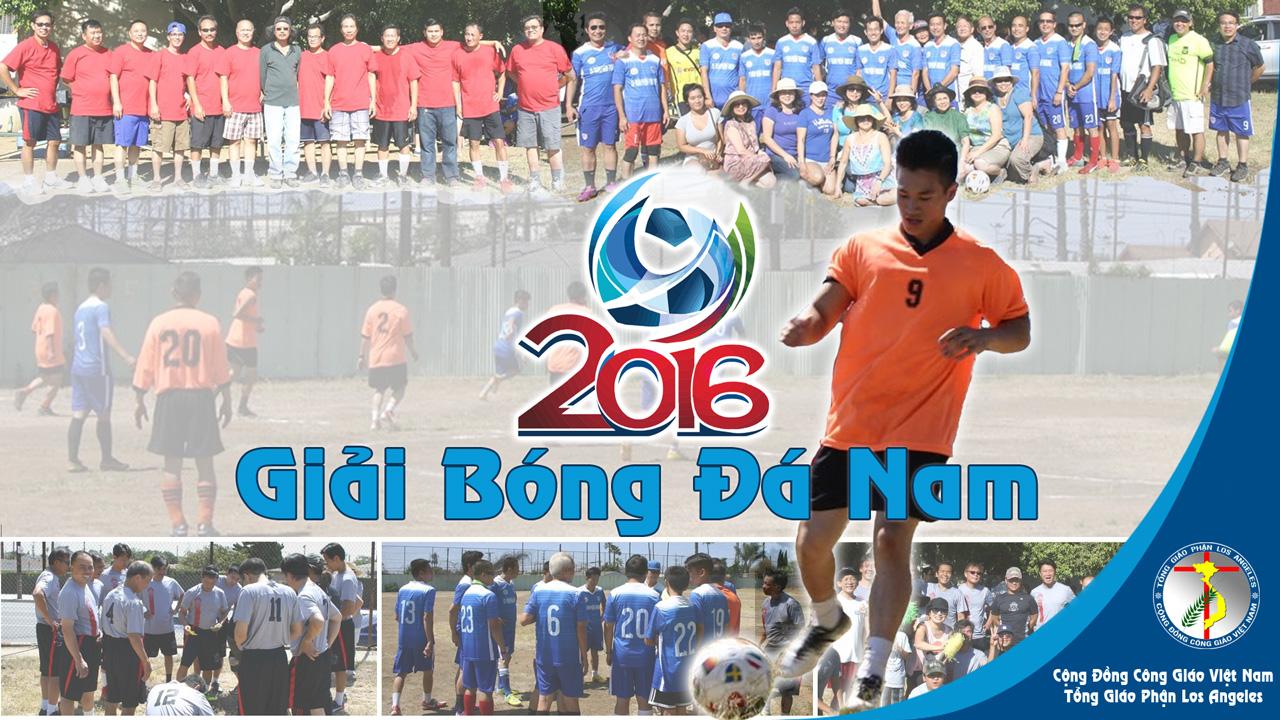 Giai-Bong-Da-2016-860