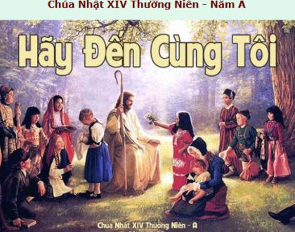 Suy Niệm - Chúa Nhật 14 Thường Niên - July 5 - Năm A - Daily Mass Thánh Lễ Online