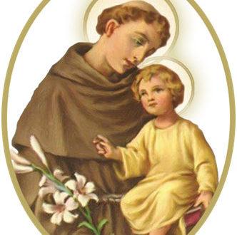 Thánh Antôn Pađua, Linh Mục Tiến Sĩ Hội Thánh (1195-1231) – Kính ngày 13 tháng 6