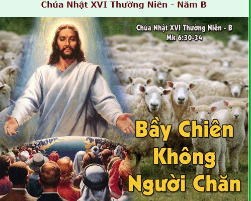 Suy Niệm - Chúa Nhật 16 Thường Niên - July 22 - Năm B