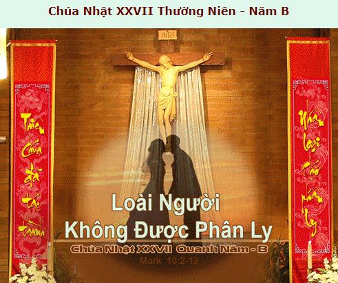 Suy Niệm - Chúa Nhật 27 Thường Niên - October 07 - Năm B